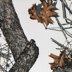 13- Mossy Oak Winter™ Gallery